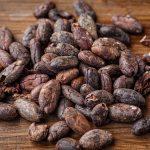 Importación de cacao en todas sus variedades y formatos